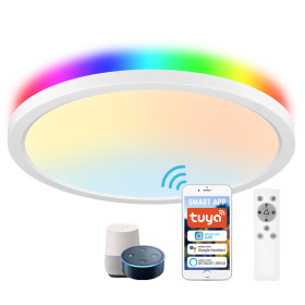 (CP-W2) Smart LED Flush Mount Ceiling Light (Main Light 2700K-6500K+ Mood Light RGB ) -Control By WIFI APP & Vioce Contorl -Work with Amazon Alexa, Google Assistant -12'' 300mm 24W -16'' 400mm 32W -100-240V -ETL cETL CE Rhos