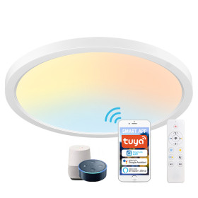 (CP-W1) Smart LED Flush Mount Ceiling Light -Color Temperature Dimmbale -Control by 2.4G Remote or WIFI APP & Vioce Contorl -Work with Amazon Alexa, Google Assistant -12'' 300mm 24W -100-240V -ETL cETL CE Rhos