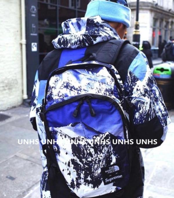 supreme X tnf mountain backpack