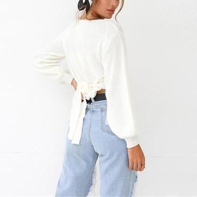 Brief V Neck Pure Color Long Sleeve Sweater