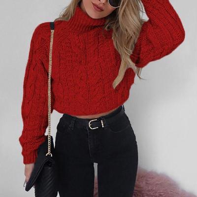 Fashion Long Sleeve Turtleneck Sweater