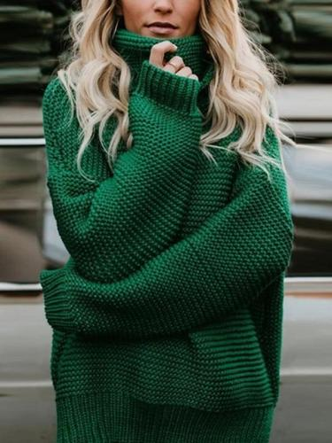 Turtle Neck  Plain Casual  Sweaters