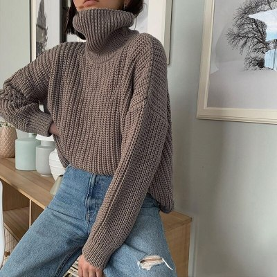 Autumn Winter Turtleneck Sweater Women Casual Solid Thick Warm Knitted Jumper Tops