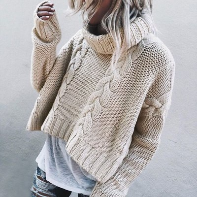 Autumn Winter Knitted Turtleneck Thick  Sweater Jumpers