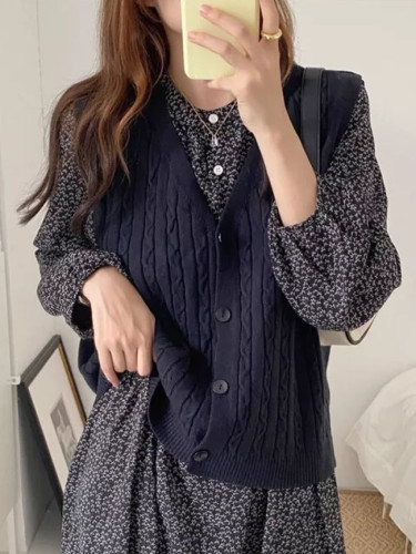 Spring Autumn Women Vest Sweaters Joker Knitted Vest Wool