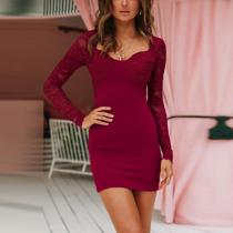 Asymmetric Neck  Decorative Lace  Plain  Long Sleeve Bodycon Dresses