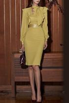 Fashion Bishop Sleeve Ruffled Splicing High-Waist Dresses