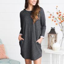 Round Neck Long Sleeve Insert Casual Dresses