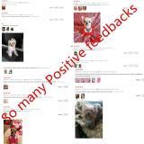 1pcs Pet Dog Cat Bibs Dog Bandana Bibs Scarf 7 Colors Sweet Collars For Small Dogs Neckerchief Bib Pets Dogs Cats Accessories G3