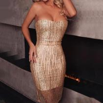 Fashion Sexy Tube Top Paillette Bodycon Dress