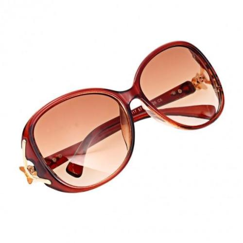 Unisex Oversize Lens Plastic Frame Gold Trim Temple Sunglasses