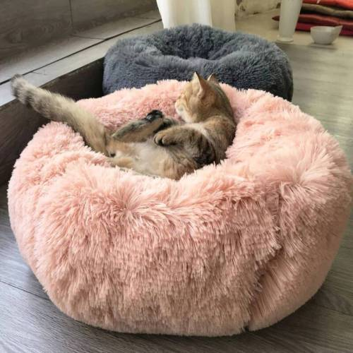 Round Soft Plush Cat Bed