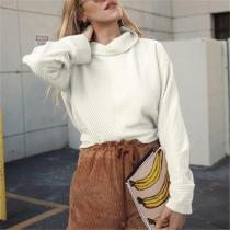 Fashion High Collar Loose  Plain Irregular Hoodie