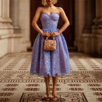Sweet Sleeveless See-Through Pure Colour Tube Top Loose Dress