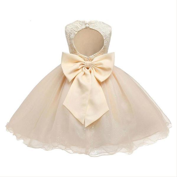 Girls Lace Tulle Dress Backless Sleeveless Kids Tutu Pageant Dress A Line Party Princess