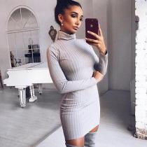 Simple Solid Color Turtleneck Slim Women Pullover Sweater Dress