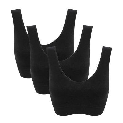 3pcs/set sexy active bra With removable Pad Seamless push up women plus size underwear wireless fitness body shape Bra