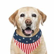 American Flag Over Collar Dog Bandana 4th of July Dog Bandana for Small Medium Large Dogs US Flag Independence Day Puppy Bandana