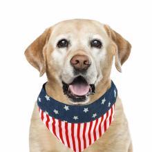 American Flag Over Collar Dog Bandana 4th of July Dog Bandana for Small Medium Large Dogs US Flag Independence Day Puppy Bandana