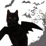 Cute Halloween Cat Costume Small Pet Cat Bat Wings Halloween Cat Wings Hallowen Cat Accessories 2020 Halloween Decorations