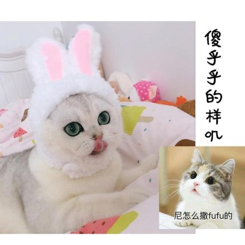 Funny Pet Dog Cat Cap Costume Warm Rabbit Hat New Year Party Christmas Cosplay Accessories Photo Props Headwear