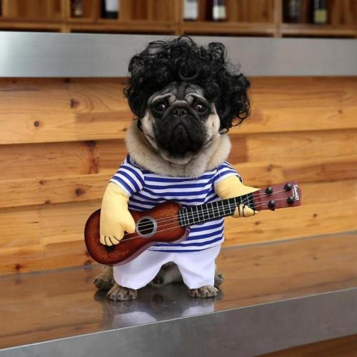 Pet Guitar Player Cosplay Dog Cat Costume Guitarist Dressing Up Party Xmas New Year Clothes For Dog Cats Costume