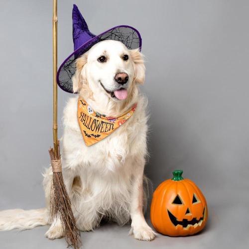 Halloween Dog Cat Bandana Collar Puppy Cat Banadas Scraf Bibs Pumpkin Skull Print Dog Neckerchief Accessories For Large Dogs