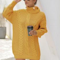 Turtleneck Chunky Cable Knitted Long Sweater