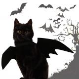 2020 New Pet Dog Cat Bat Wing Cosplay Prop Halloween Bat Fancy Dress Costume Outfit Wings Cat Costumes Photo Props Headwear