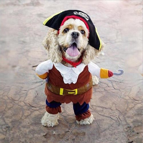Funny Pet Clothes Cosplay Pirate Dog Cat Party Cute Costume Clothing Comfort For Small Medium Dog