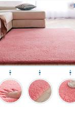 Nordic fluffy carpet rugs rectangle plush anti-slip soft carpet