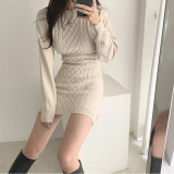Knitted Round Neck Sweater Bodycon Dress