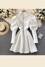 Puff Sleeve A-Line Dresses Turtleneck Elegant Party Dress