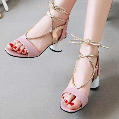 Spring/Summer Chunky Heel Casual Elegant Sandals