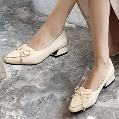 Spring/Summer Chunky Heel Elegant Pointed Toe Shoes