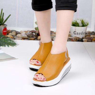 Higt Heel Shoes Hot Sale Gladiator Summer Sandals Fish mouth Thick