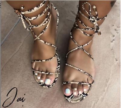 Women Sandals Fashion Slippers