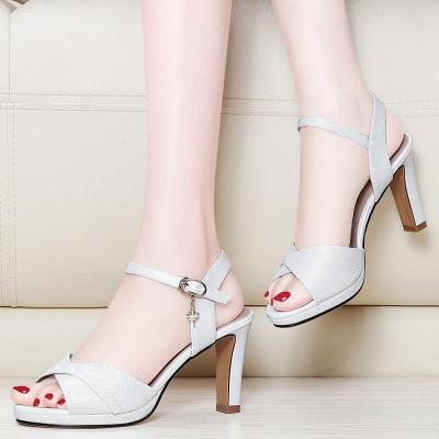 Sandals Women's New Summer Open Toe One Word Buckle Type Women's Sandals Fashion Chunky Heel Women's High Heels