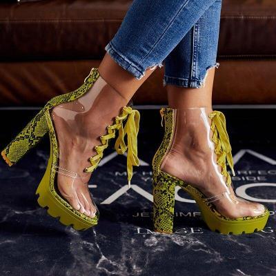 Women Ankle Boots Booties High Heels Pumps Transparent Sandals Lace Up Shoes Woman
