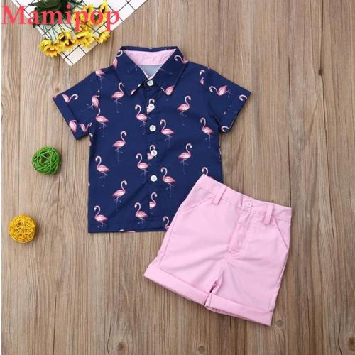 Gentleman Clothes Sets Short Sleeve Print Shirt Tops+Pink Shorts 2PCS Sets