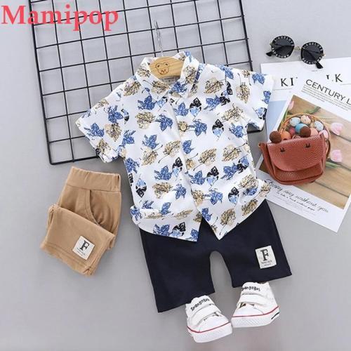 Summer Toddler Kids Baby Boy Floral T Shirt Tops Shorts Pants 2pcs Clothes Set