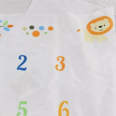 Baby Milestone Blanket Infant Animal Lion Background Cloth Photography Props Gift