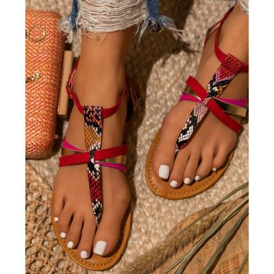 2020 Women Sandals Snake Print Summer Shoes Women Large Size Andals Flat Women Sandals Womens Summer Shoes Sandals Female