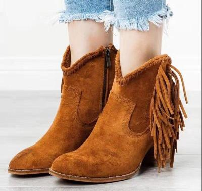 Plus Size Women Fringe Ankle Boots Faux Suede Boots High Heels Winter Shoes Femal Snow Boots Zip Gladiator Botas Mujer N7835