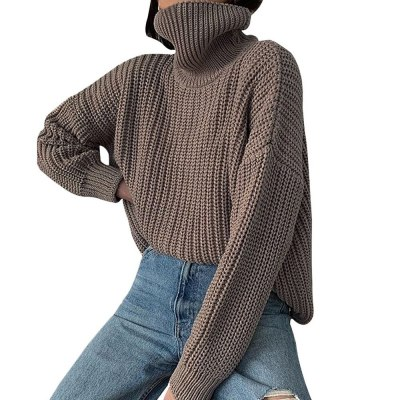 Women Knitted Turtleneck Sweater Long Oversized Sweaters Women Solid Cashmere Pullovers Autumn Winter Korean Knit Tops Dropship