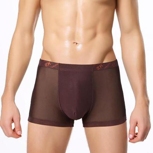 Breathable Sexy Large Size Mesh Men's Ice Silk Boxers