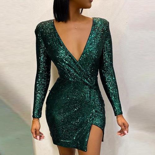 Fashion Ladies Long Sleeve Mini Dress