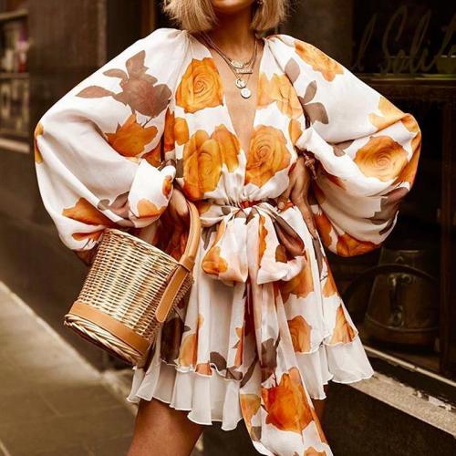 Women's V-Neck Long Sleeve Print Dress