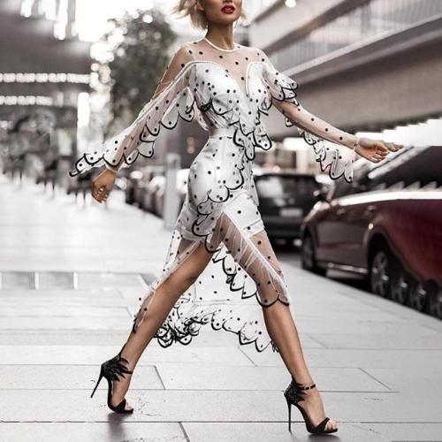 Long Sleeve Lace Tranparent Sexy Dress