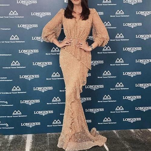 Elegant Sexy Deep V Long Sleeve Evening Dress